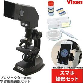 【お買い物マラソン クーポン配布中】 顕微鏡 小学生 スマホ撮影セット 学習 子供 ビクセン ミクロスコープS600 プロジェクター 自由研究 生物顕微鏡