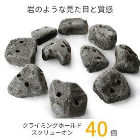 RMCG 本物の岩のような見た目・質感のクライミングホールド 40個セット ボルダリング スクリューオン セット ホールド トレーニング ロッククライミング 子供 インテリア 石 壁 木ネジ キッズ 本格派 ウォール 送料無料 あす楽