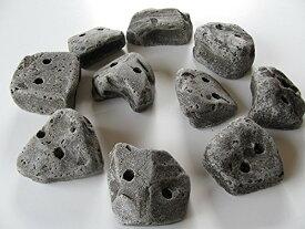 RMCG 本物の岩のような見た目・質感のクライミングホールド 10個セット ボルダリング スクリューオン