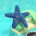 StarFish マグネット アライボヒトデ サイズ:8cm