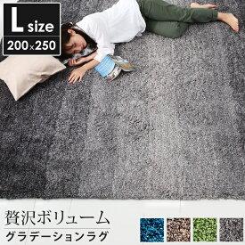 ラグ 滑り止め シャギーラグ センターラグ 絨毯 ラグ ホットカーペット対応 ダイニングラグ 長方形 [L:200×250cm] 3畳 オシャレ おしゃれ