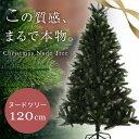 クーポン クリスマスツリー クリスマス