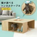 [クーポンで500円OFF 3/16 18:00〜3/18 12:59] 猫 ローテーブル おしゃれ 正方形 ペット テーブル トンネルテーブル …