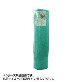 マット ディスメル クリーンワン 45×60cm グリーン OK698