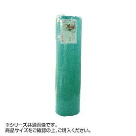 マット ディスメル クリーンワン 45×60(T)cm グリーン OK799