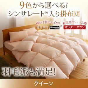 【単品】掛け布団 クイーン アイボリー 9色から選べる!シンサレート入り掛布団