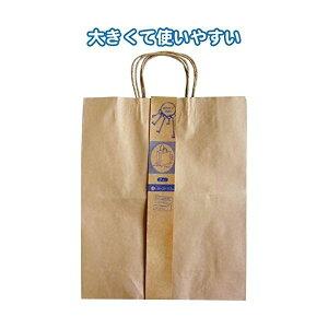 クラフト紙バッグLL 2枚入(40×32×11.5cm) 【12個セット】 35-278