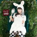 <森のうさぎのふわふわワンピースセット ジュニア・レディースサイズ>【あす楽対応】【楽ギフ_包装】【160サイズ 子…