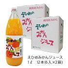 みかんジュース 愛媛 伯方果汁 えひめのみかんジュース 瓶 1L まとめ買い 6入×2箱 計12本