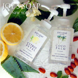 JOE'S SOAP(ジョーズソープ) ボディソープ 石けん ボタニカル クール 泡 ハンドソープ ディスペンサー オーガニック いい香り ギフト プレゼント 女性 [GWS]【HLS_DU】