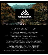 GREGORYグレゴリーTRANSFERMトランスファーボディバッグ斜めがけ旅行レジャーフェスメンズレディースユニセックス黒ブラック送料無料65126