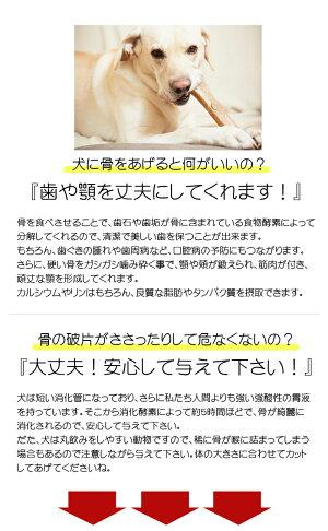 【北海道直送】愛犬用エゾシカ背骨2本(約1kg)エゾ鹿肉手作り食ペット用おやつ小型犬でも食べやすい犬用骨