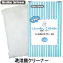 Washing Craftsman(ウォッシング クラフトマン)ランドリークリーナー(洗濯槽クリーナー)500g×2袋