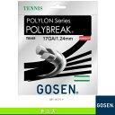 ポリロン ポリブレイク 17/POLYLON POLYBREAK 17(TS161)《ゴーセン テニス ストリング(単張)》