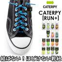 Caterpyrunplus