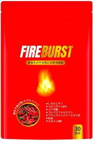 【Go In Eat】【FIRE BURST】 L-カルニチン BCAA サプリ 厳選素材 30日分