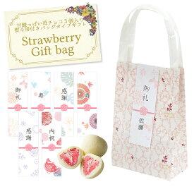 【名入れ可能】Strawberry Gift bag(苺チョコ3個入り)〜選べる熨斗帯付き〜【お洒落・バレンタイン・ホワイトデー・バッグ・義理・お返し】
