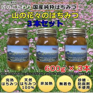 つかもと養蜂場 塚本養蜂場 健康 自然食品 健康食品 はちみつ 完熟純粋蜂蜜 国産 生はちみつ 非加熱 天然はちみつ 純粋はちみつ 蜂蜜 ハニー 無添加 無農薬 オーガニ