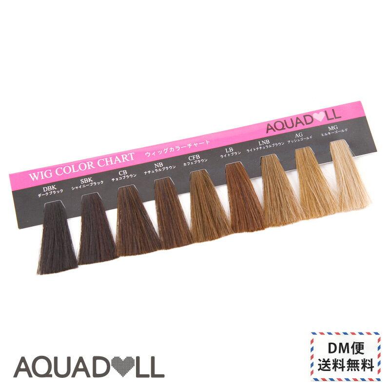 前髪 ウィッグ エクステンション |DM便送料無料|[ウィッグカラーチャート][wgcc001] 耐熱 エクステ ウイッグ wig AQUADOLL アクアドール fs3gm [M便 1/15]
