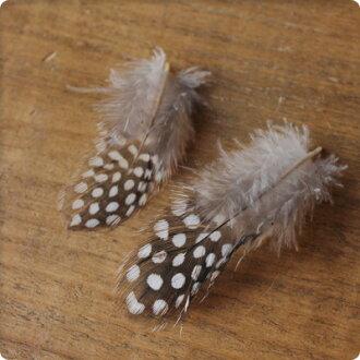 horohoro鳥羽根零件6瓶一套3-10cm手工製作的/DIY材料素材羽毛零件
