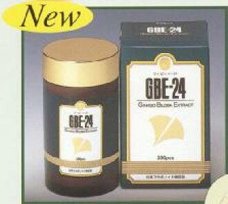 Ginkgo biloba leaf extract GBE-24 140 grain