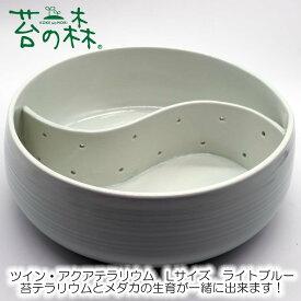 苔の森 ツイン・アクアテラリウム Lサイズ ライトブルー 睡蓮鉢 水連鉢 スイレン鉢 メダカ鉢