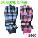 スキーグローブジュニアキッズ子供用防寒グローブ防寒手袋雪遊びメール便で送料無料代引発送は出来ません8660