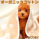 犬用ベッド【綿毛布×ボアスクエアベッド・Lサイズ】