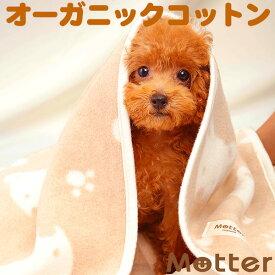犬 ブランケット クマ柄/Mサイズ オーガニックコットン