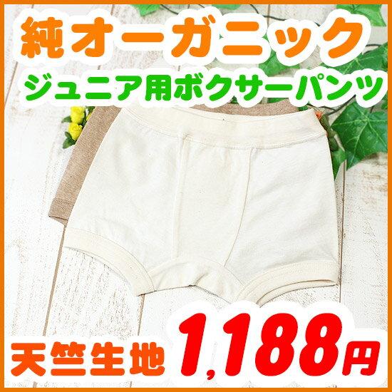 ジュニア 天竺生地 男児女児兼用ボクサーパンツ 120 130 140 150cm オーガニックコットン 日本製 きなり/ブラウン