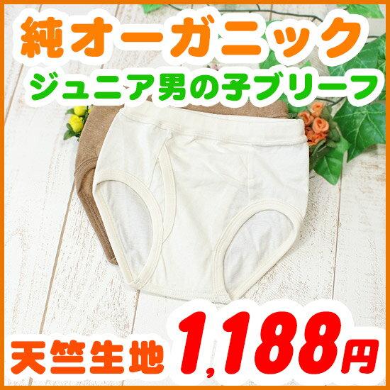 ジュニア 男の子 天竺生地ブリーフパンツ 120 130 140 150cm オーガニックコットン 日本製 きなり/ブラウン
