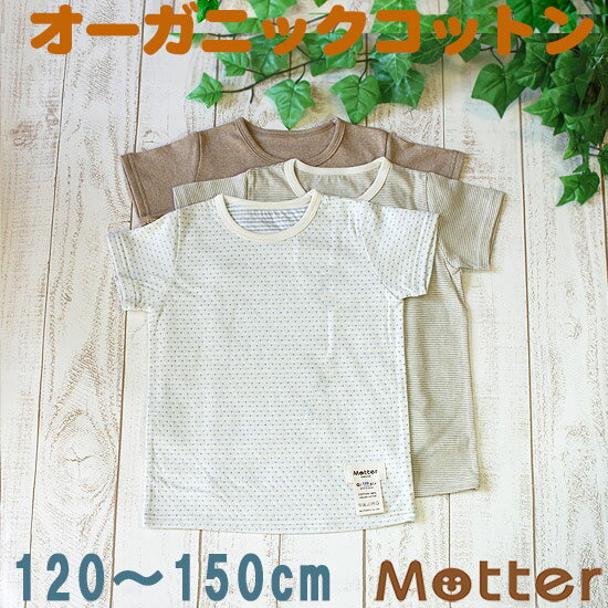 ジュニア 男の子 選べる12種類半袖Tシャツ 120 130 140 150cm オーガニックコットン 日本製 春/夏 全12色