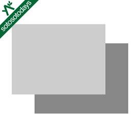 スノーピーク snow peak アメニティドームS マットシートセット SET-022H [テント グランドシート インナーマット]