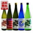 播州・姫路の酒蔵【龍力(たつりき)】が提案する、新しい日本酒の楽しみ。龍力ドラゴンシリーズ720ml5本セット【送料無料】!【送料無料】龍力大吟醸米のささやきドラゴン青ラベルEpisode1・黒ラベルEpisode2・Episode3・赤ラベル・緑ラベル