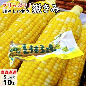 嶽きみ(真空パック) Sサイズ 10本 青森県産 だけきみ ダケキミ とうもろこし トウモロコシ もろこし きび 送料無料