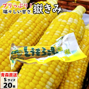 嶽きみ(真空パック) Sサイズ 20本 青森県産 だけきみ ダケキミ とうもろこし トウモロコシ もろこし きび 送料無料