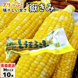嶽きみ(真空パック) Mサイズ 10本 青森県産 だけきみ ダケキミ とうもろこし トウモロコシ もろこし きび 送料無料