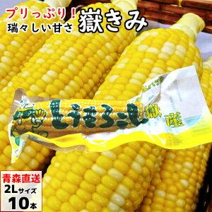 嶽きみ(真空パック) 2Lサイズ 10本 青森県産 だけきみ ダケキミ とうもろこし トウモロコシ もろこし きび 送料無料