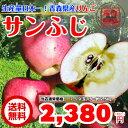 【送料無料】 りんご 青森県産 サンふじ 2.5kg 訳あり 家庭用 お試し リンゴ 林檎 アップル