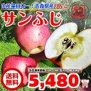 アップル ダイエット ジュース スムージー スーパー