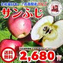 【送料無料 】 りんご 青森県産 サンふじ 3kg 訳あり 家庭用 お試し リンゴ 林檎 アップル 健康 ダイエット ジュース スムージー にも♪