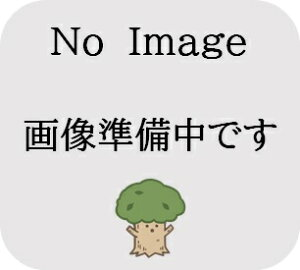 【法人様限定】LVL胴縁 3,000×45×181束(10本入)
