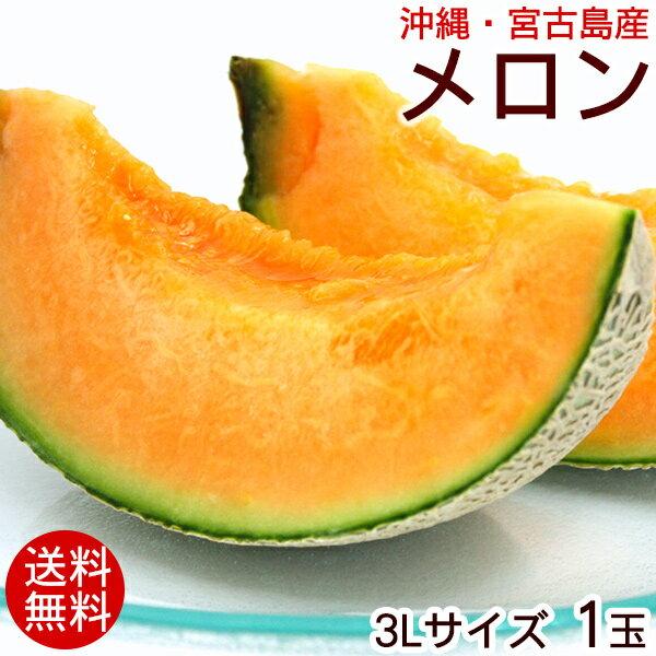 宮古島産 メロン 3Lサイズ 1玉 【送料無料】