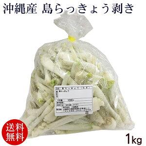 沖縄産 島らっきょう 剥き 1kg 【送料無料】 /島ラッキョウ 生 皮むき
