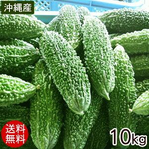 【送料無料】宮古島産ゴーヤー10kg