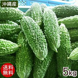 沖縄産 ゴーヤー 約5kg(20〜25本)【送料無料】