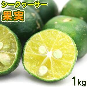沖縄産 シークワーサー 果実 1kg /青切りシークワーサー ヒラミレモン