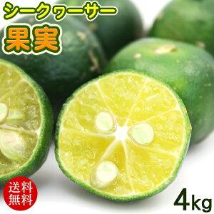 沖縄産 シークワーサー 果実 4kg 【送料無料】 /青切りシークワーサー ヒラミレモン