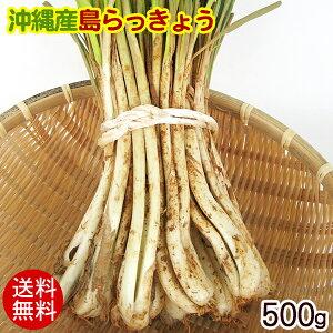 沖縄産 島らっきょう(生)500g