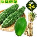 沖縄野菜 お試し3点セット(ゴーヤー、青パパイヤ、島らっきょう) 【送料無料】